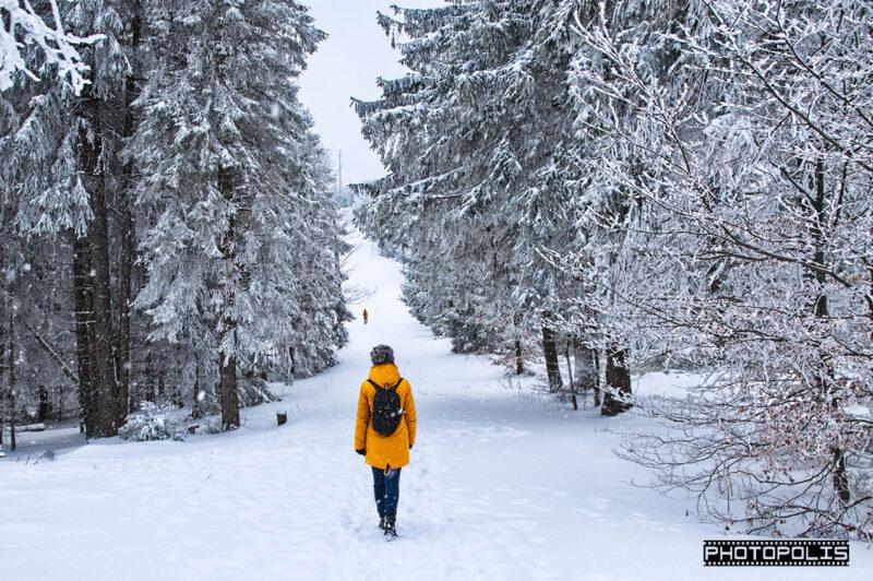 Beskid Śląski zimą - Szlak na Szyndzielnię