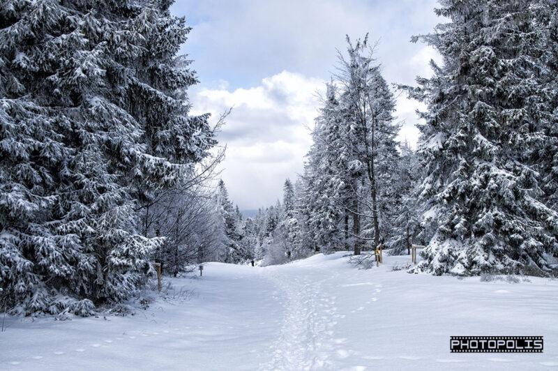 Beskid Śląski zimą - Szlak na Klimczok