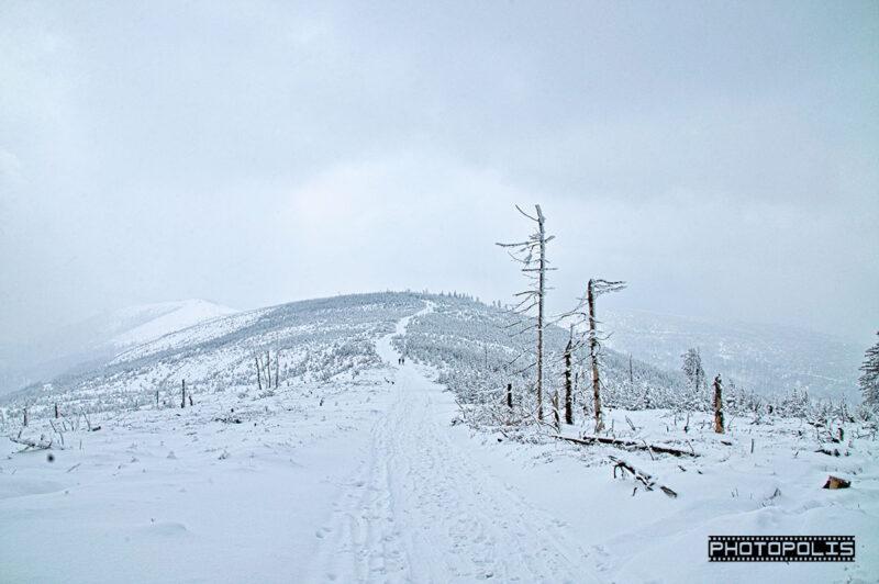 Beskid Śląski zimą - Szlak na Malinowską Skałę